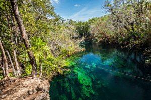 cenote mexique eaux turquoises