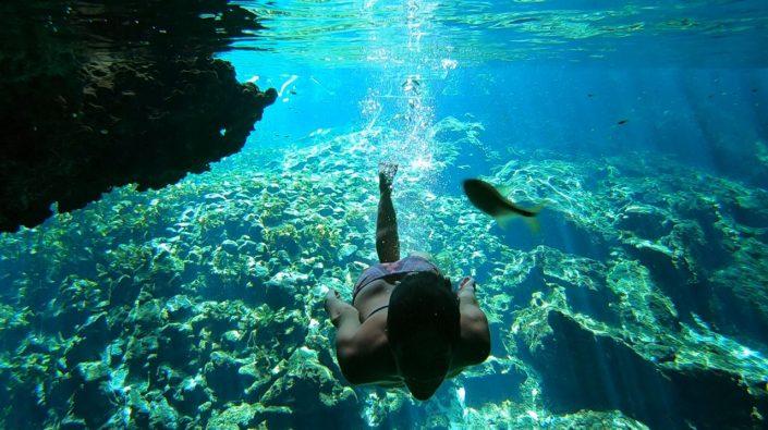 Snorkeling en cenote à Tulum