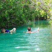 Floating dans la mangrove de Sian Ka'an Muyil