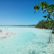 crystal clear water bacalar mexico