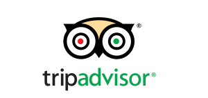 Trip Advisor & Mexikoo