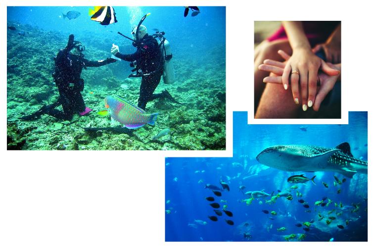 Voyage demande en mariage au Mexique - sous l'eau
