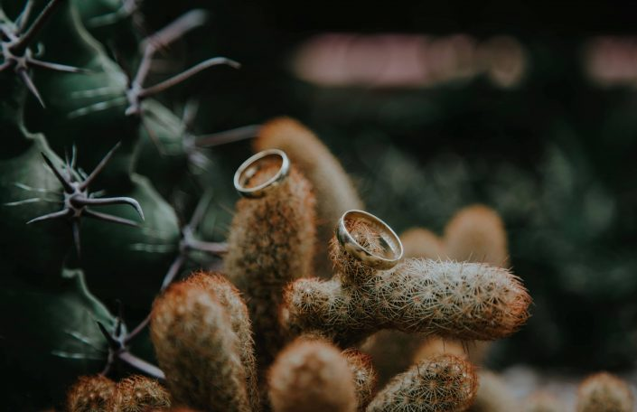 Voyage demande en mariage Mexique