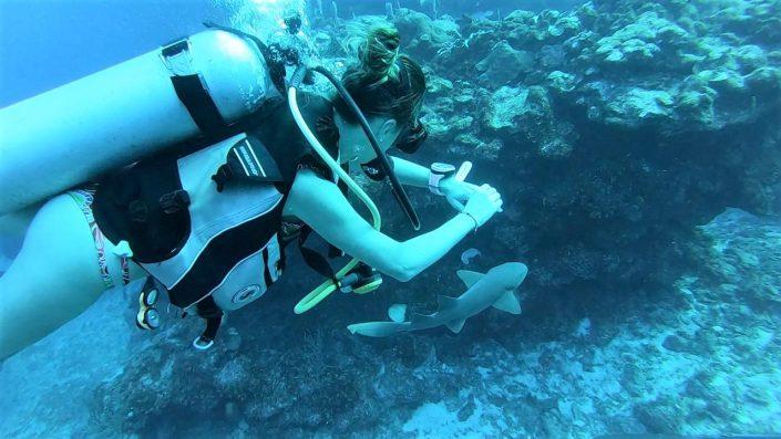 Plongée au Mexique par l'agence de voyage Mexikoo