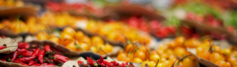 Cuisine Mexicaine - voyage au Mexique